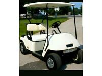 Easy go golf buggy