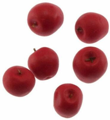 Dollhouse Miniature Set of 6 Red Delicious Apples