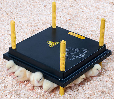 COMFORT 25 CHICK BROODER, HEATING PLATE, ELECTRIC HEN