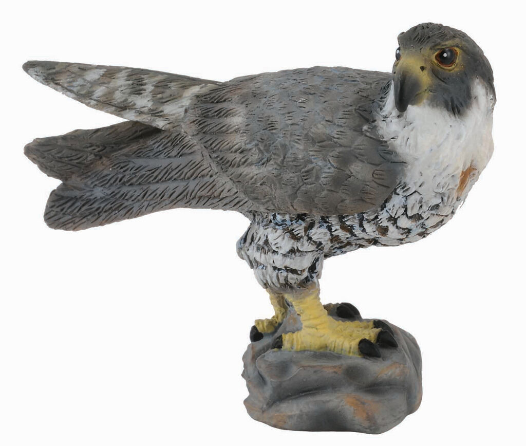 PEREGRINE FALCON BIRD TOY MODEL by COLLECTA 88399 *NEW WITH TAG*