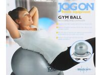 Gym Exercise balls-Ideal for Pregnancy/Maternity Exercises/School Gym etc.