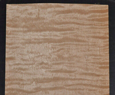 Curly Maple Raw Wood Veneer Sheets 5 X 28 Inches 142nd   7651-27