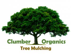 Clumber Organics Tree Mulching Tarome Ipswich South Preview