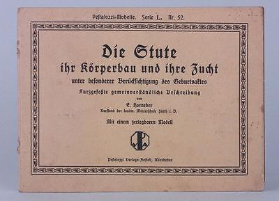 E.Horneber - Die Stute  Pestalozzi-Modelle Serie L. Nr. 52