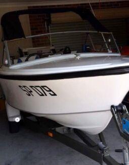 Stejcraft boat 4.2 metre