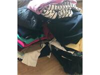 Bundle of ladies women's clothes size 10/12