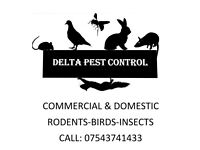 Delta pest control wasp-bees-ants-rats-mice-cocroaches-comercial domestic pest control and proofing