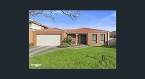 Seabrook (Point Cook) Four Bedroom Single Story House for Rental