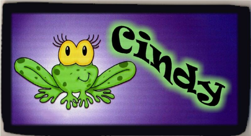 Personalized Custom Cartoon Frog Checkbook Check Cover Credit Card Holder Funny