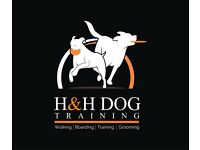 DOG WALKER/ DRIVER, DOG GROOMER/DRIVER, 2 POSITIONS AVAILABLE