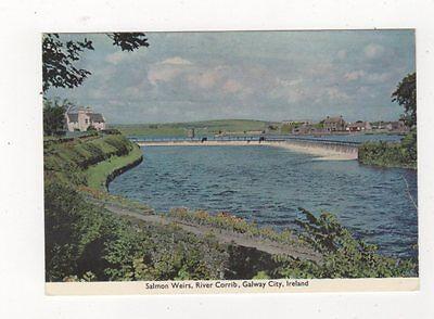 Salmon Weirs River Corrib Galway City Ireland 1993 Postcard 874a