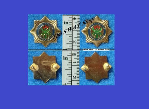 SOUTH AFRICA POLICE SERVICE COLLAR BADGE PAIR Post 1994 AFRICAN