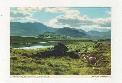 Maam Valley Connemara Co Galway Ireland Postcard 879a