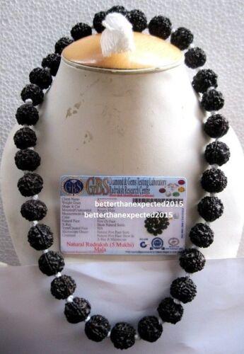 RARE BLACK RUDRAKSHA RUDRAKSH BEADS 20 MM KANTHA MALA ROSARY NECKLACE~CERTIFIED