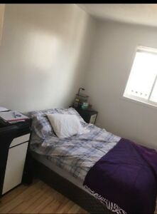 1 room fleming dr London Ontario image 3