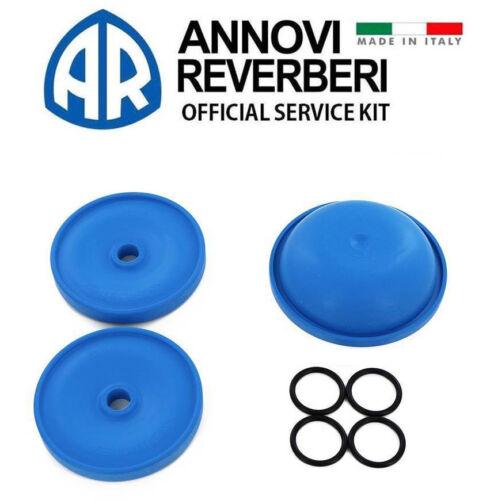 Hypro D30 Diaphragm Pump Repair Kit 9910-KIT1724 9910KIT1724 Made in Italy