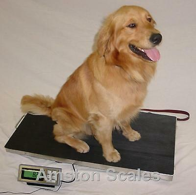 700 Lb 38 X 20 Vet Veterinary Animal Pet Digital Scale Dog Pet Goat 4h Sheep Pig