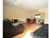 Spacious 3 bedroom garden house in the heart of Camberwell