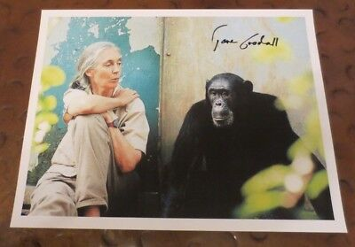 Jane Goodall Famous Primatologist Anthropologist Signed Autographed Photo Chimps
