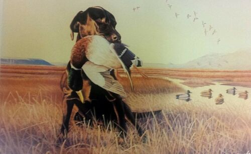 Signed Numbered W Dowdy Art Lithograph Dog Labrador decoy Ducks Unlimited artist