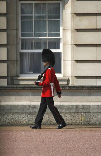 British Military Uniform Buying Guide