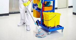 Affordable Cleaning Services Perth Perth City Area Preview