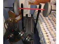 Weights, Bench and Dumbbells