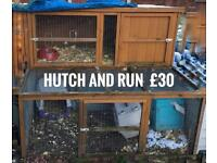 Hutch/cages available - prices vary