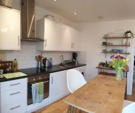 Beautiful, bright home in the heart of the city - available for summer!