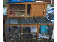 Hutches/cages available