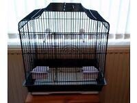 Black birds cage