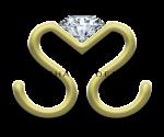S.Michael Designs