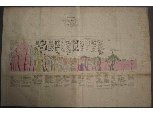 EARTH GEOLOGICAL STRATIGRAPHY 1836 MAGGI LARGE ANTIQUE GEOLOGICAL WORLD MAP