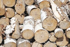 Seasoned Birch firewood