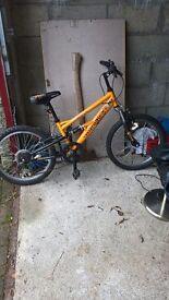 Boys stomp bike