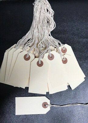 X100 Manila Shipping Tags 2 3 14 X 1 58with String And Reinforced Eye