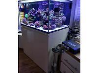 Marine aquarium fish tank by Cadlight USA