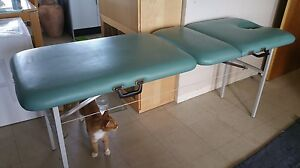 Athlegen massage table $50 Chifley Eastern Suburbs Preview