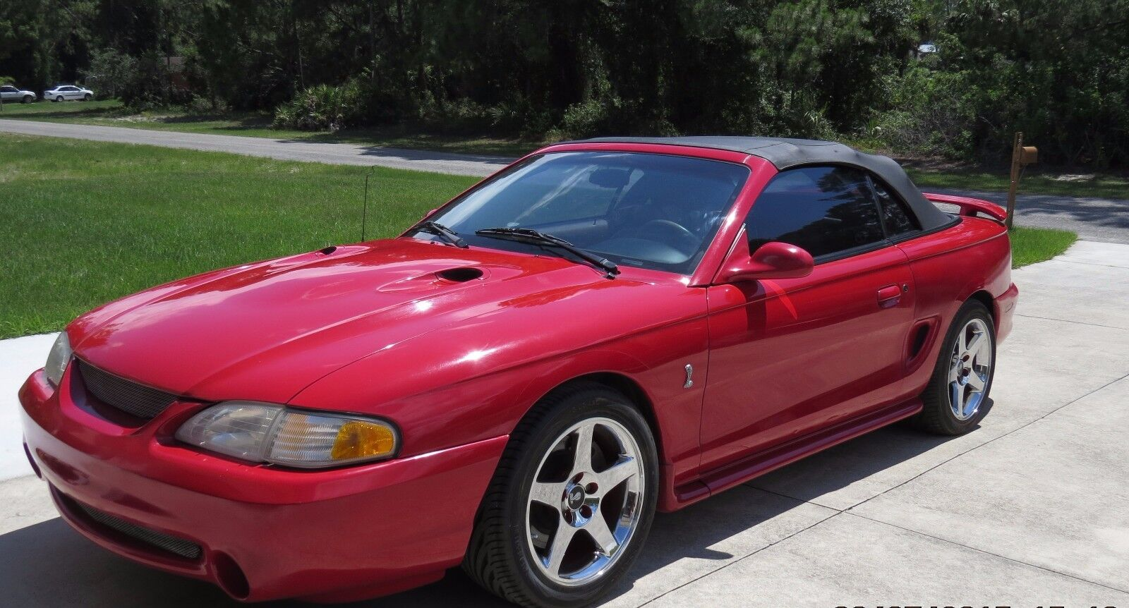 1997 mustang cobra convertible used ford mustang for sale in lehigh acres florida. Black Bedroom Furniture Sets. Home Design Ideas