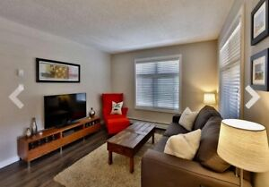 Condo for rent : Quiet corner unit just off Whyte Ave