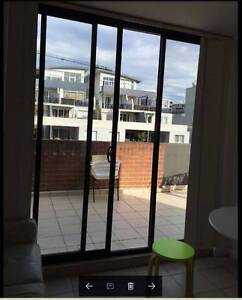 Room Available in Dee Why  Center $ 240 Including all bills Dee Why Manly Area Preview