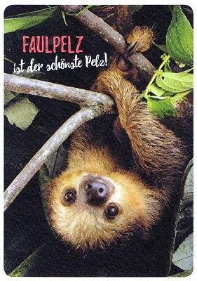 Spruchkarte: niedliches Faultier im Baum, Spruch: Faulpelz ist der schönste Pelz