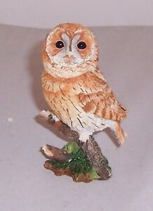 Country Artists Birds of Tawny Owl