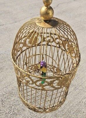 Antique Victorian Unique Decorative Scroll Brass Bird Cage South Africa Exotic