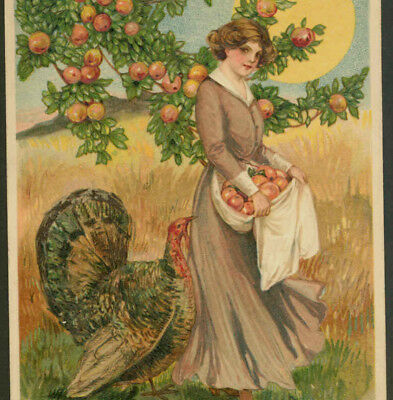 SCHMUCKER..PILGRIM LADY GATHERS APPLES,THANKSGIVING TURKEY,APRON,WINSCH POSTCARD