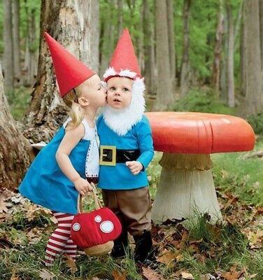 NWT GYMBOREE HALLOWEEN GNOME COSTUME TOP + PANTS/BOOTS + HAT/BEARD + MUSHROOM (Top Boy Halloween Costumes)