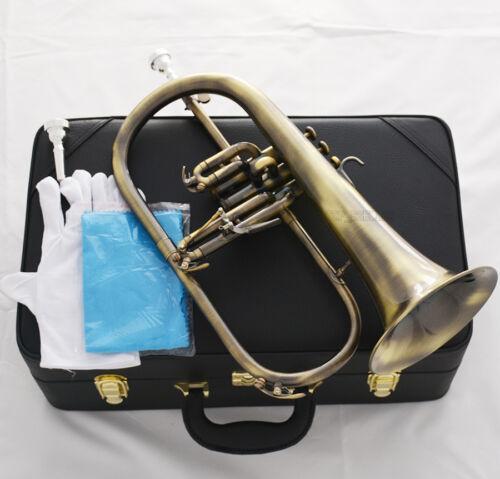 Professionl Antique Flugelhorn Bb Flugel Horn Monel Valve 2Pc Mouth Leather Case