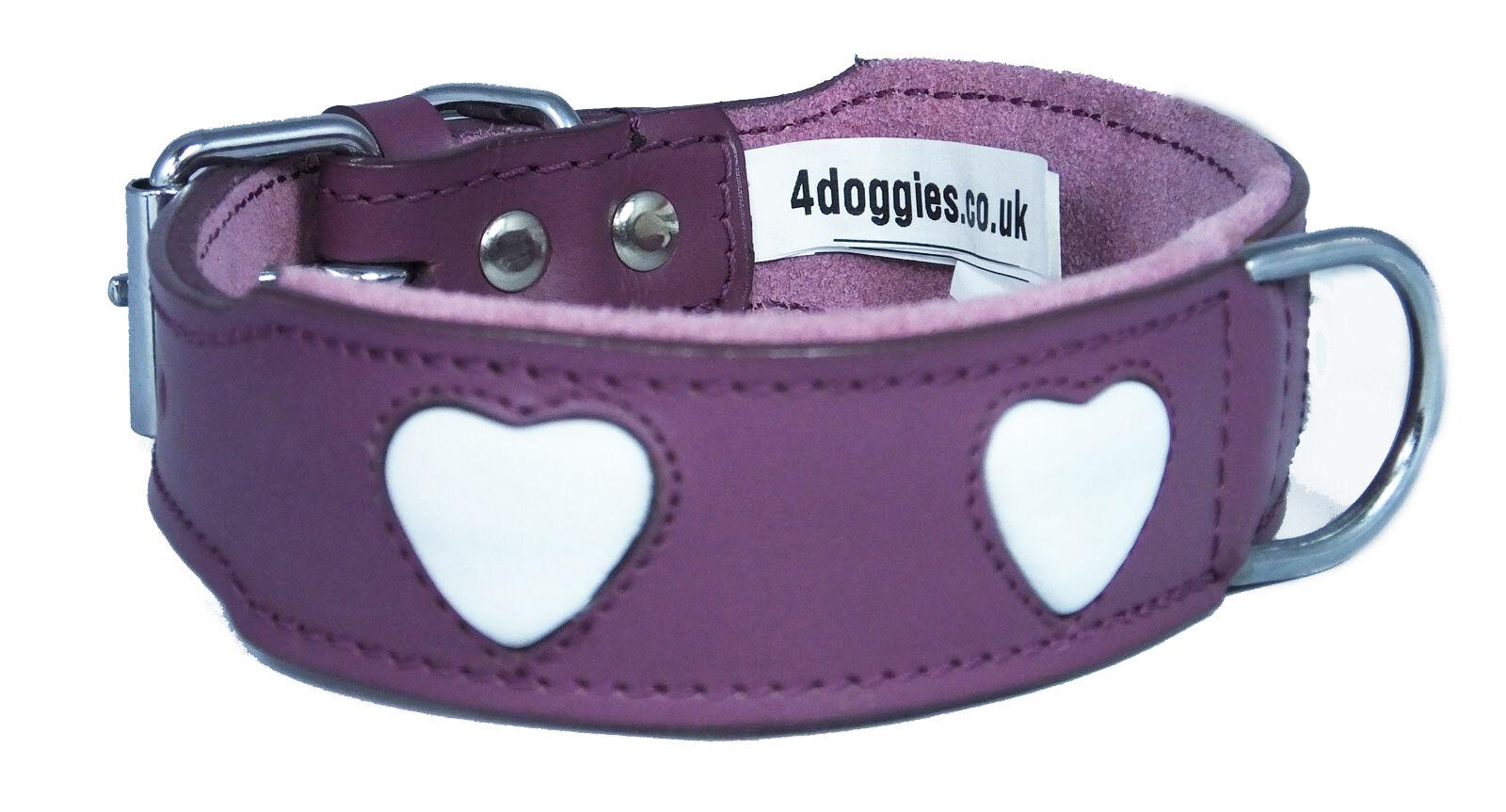 Purple Suede Dog Collar