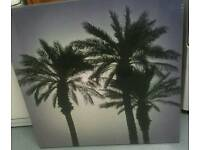 New Large Palm Tree Canvas Picture