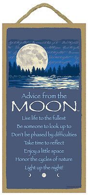 ADVICE FROM THE MOON Inspirational Primitive Wood Hanging Sign 5